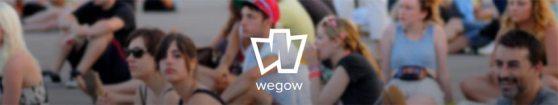 varios_logo_wegao