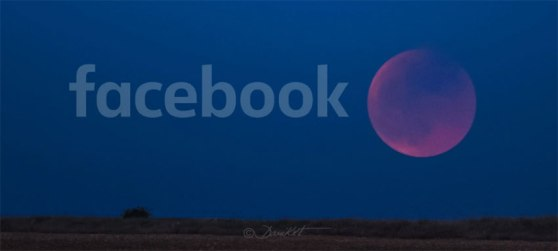 fb_eclipse-lunar.jpg