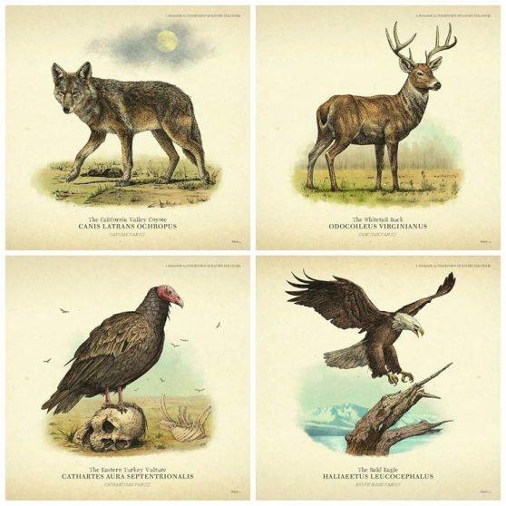juegos_red-dead_online-fauna-animal.jpg